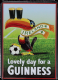 Guinness Football Toucan 3D embossed metal fridge magnet (se 2508)